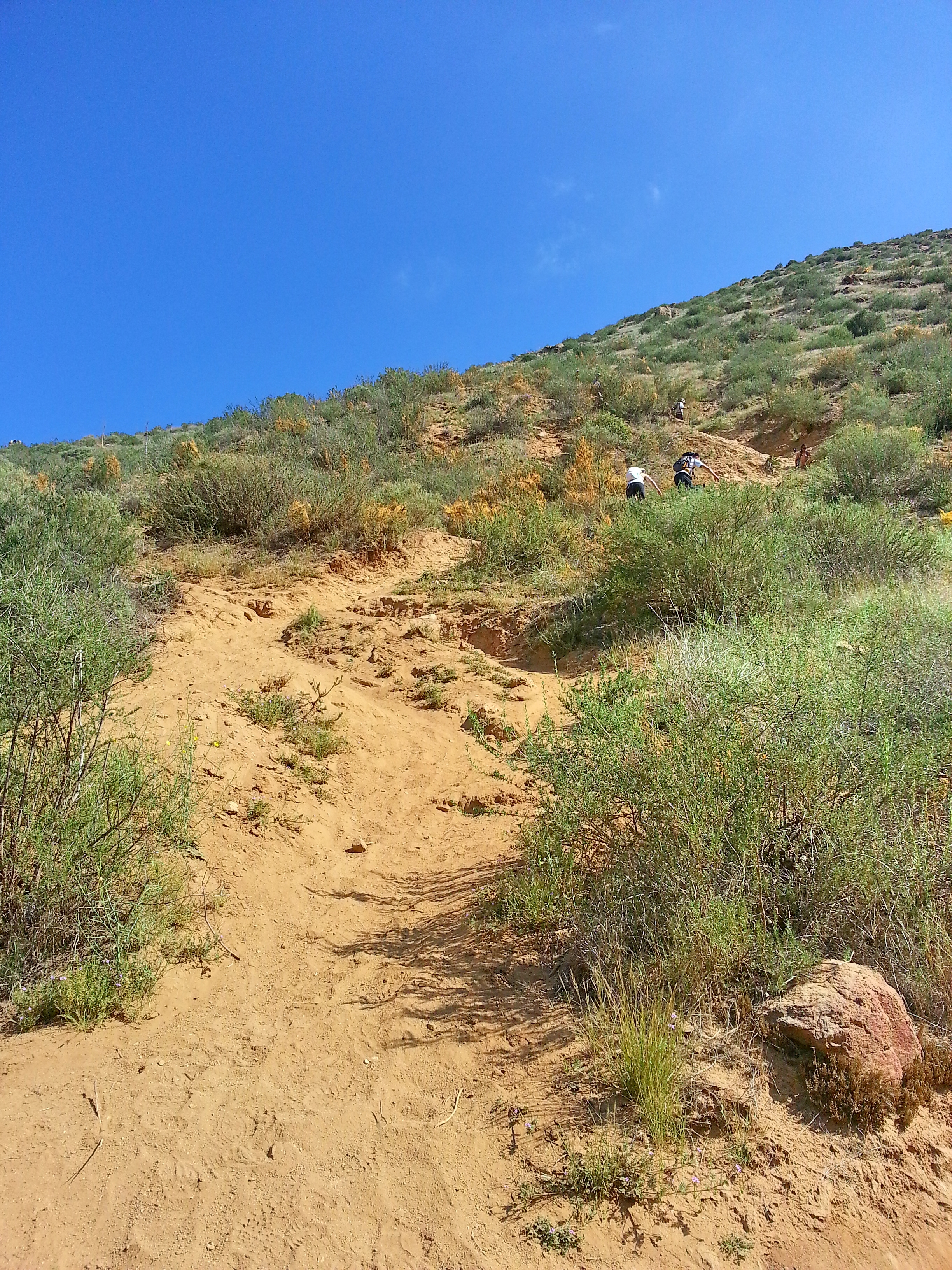 Looking back up at the sandy portion of the trail following the steep section