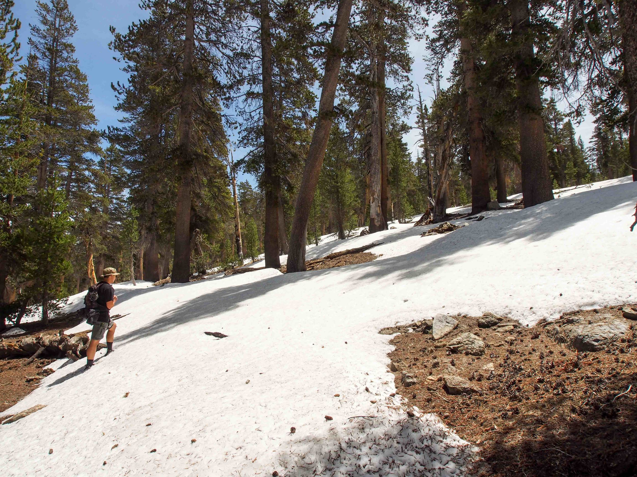 As we climbed, the snow patches covered more ground
