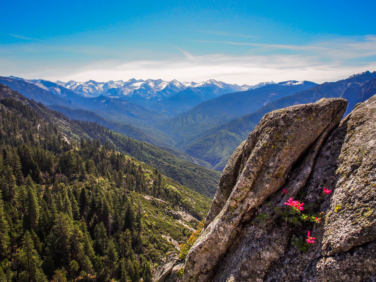 Spring time in the Sierras is a beautiful time
