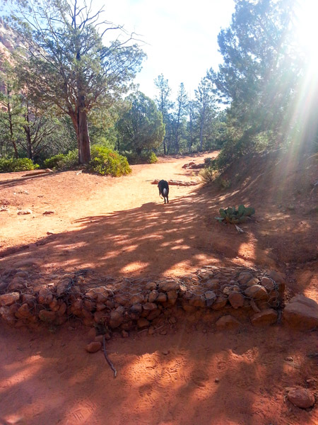 Trail description of Devil's Bridge hike in Sedona