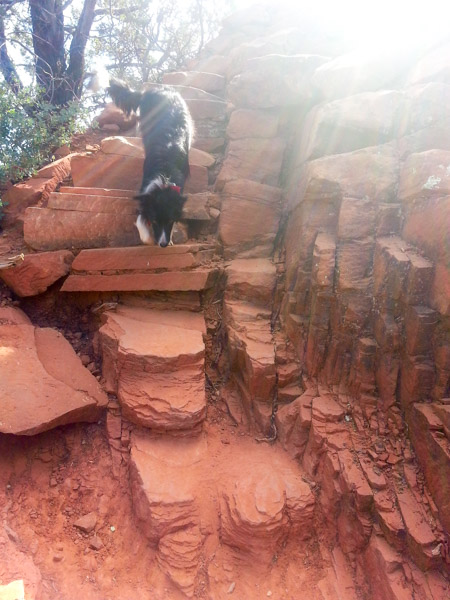 Macey nimbly making her way down the steep stairs