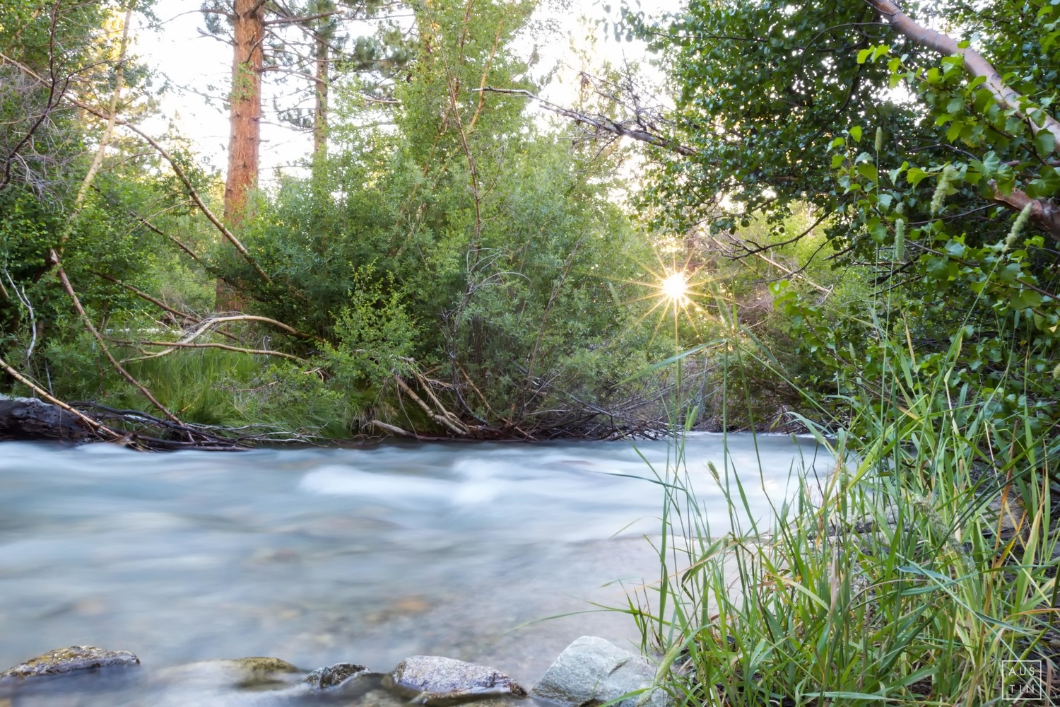 Big Pine Creek flowing right by camp site #19