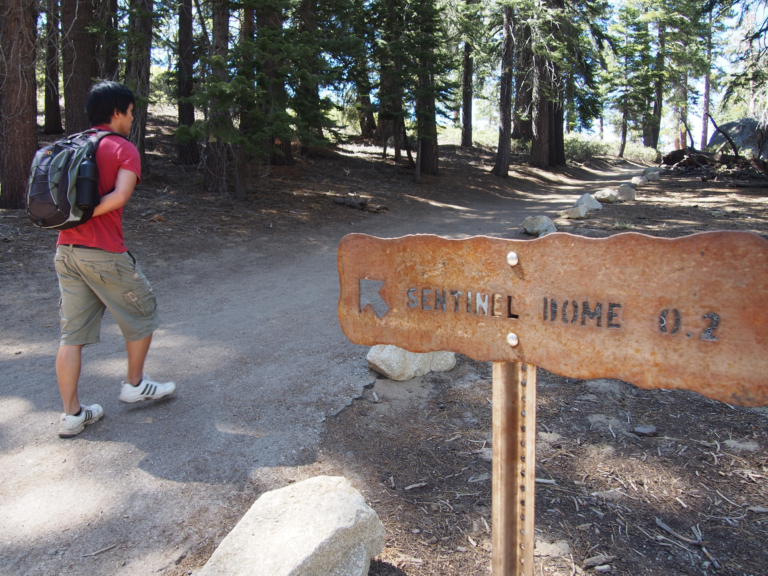 The trail to Sentinel Dome is easy, well maintained, and even paved at this section