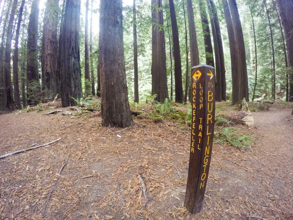 Where the Burlington trail breaks off