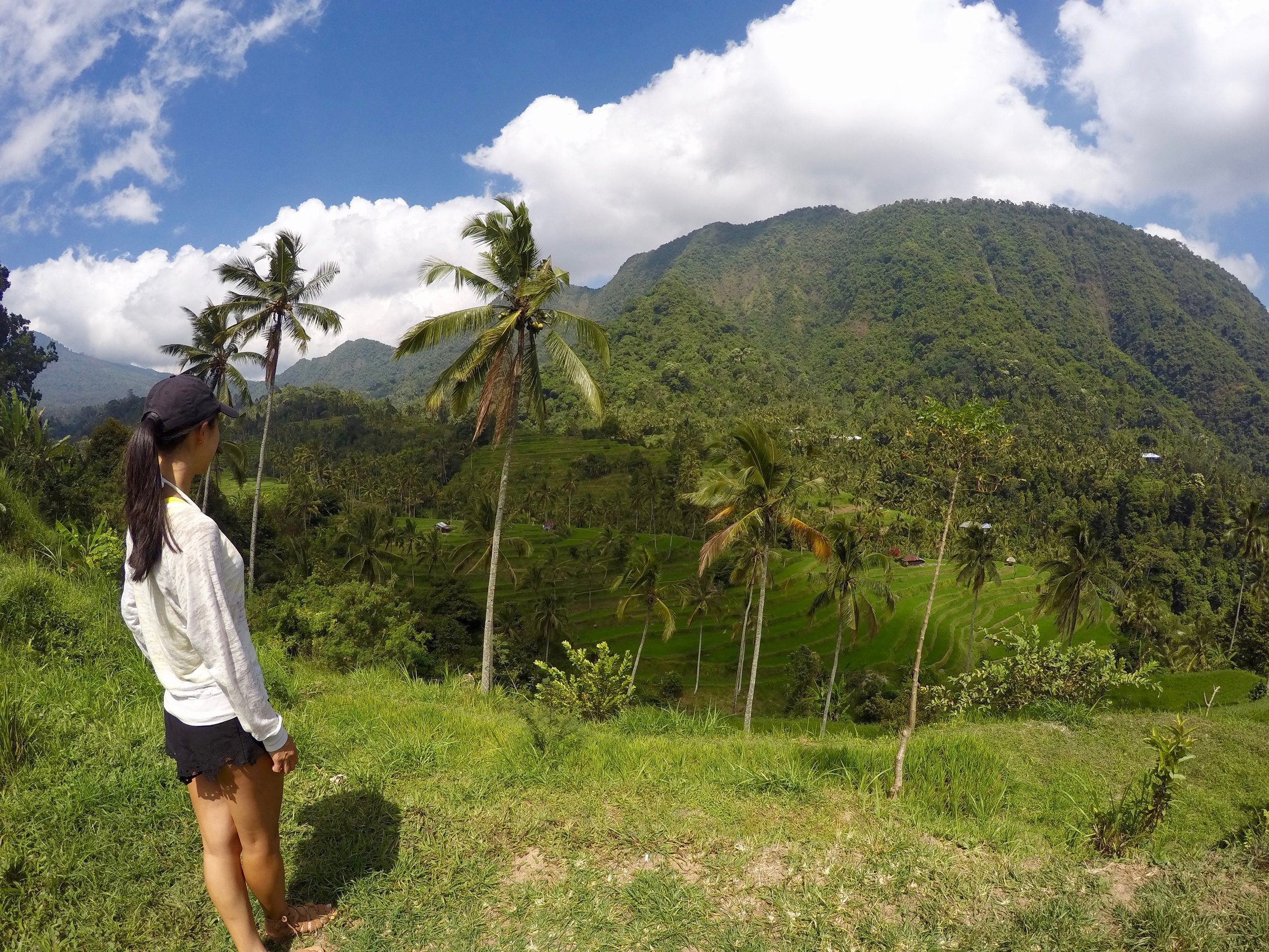 Looking over the Lemukih rice fields down in one of the valleys