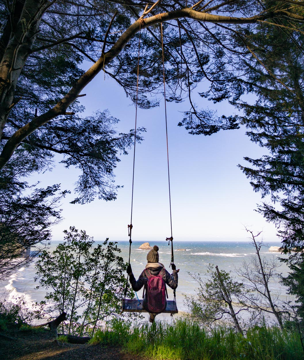 The perfect coastal tree swing - thank you to the kind soul who put it up