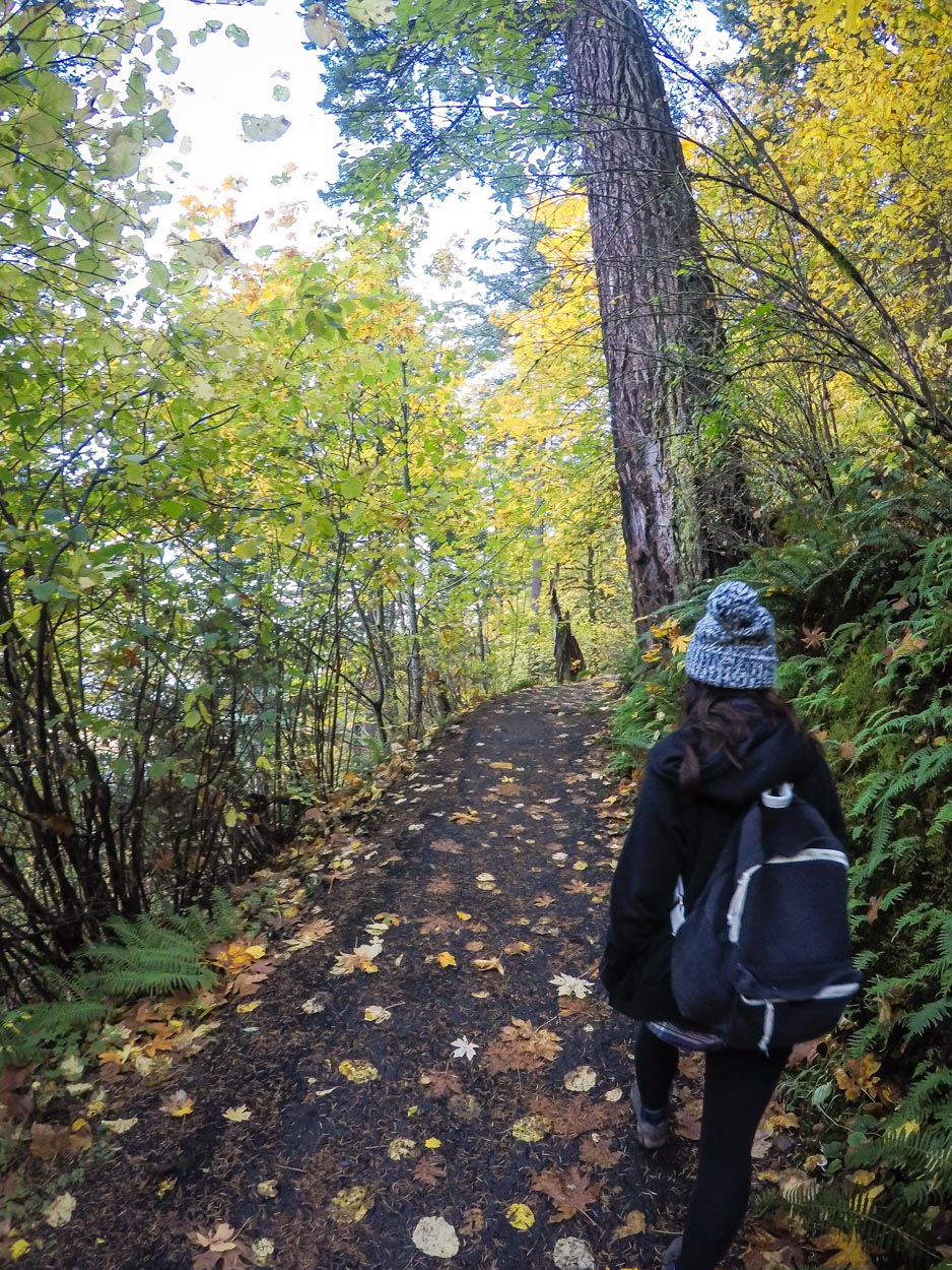 Wahkeena Falls Day Hike in Portland, Oregon