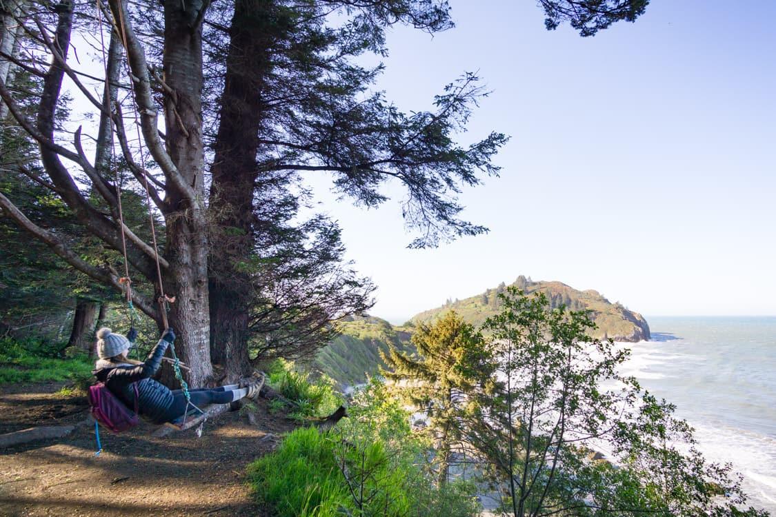 trinity-coastal-tree-swing.jpg