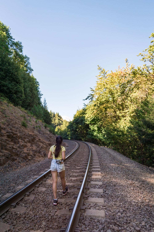 mossbrae-falls-train-tracks