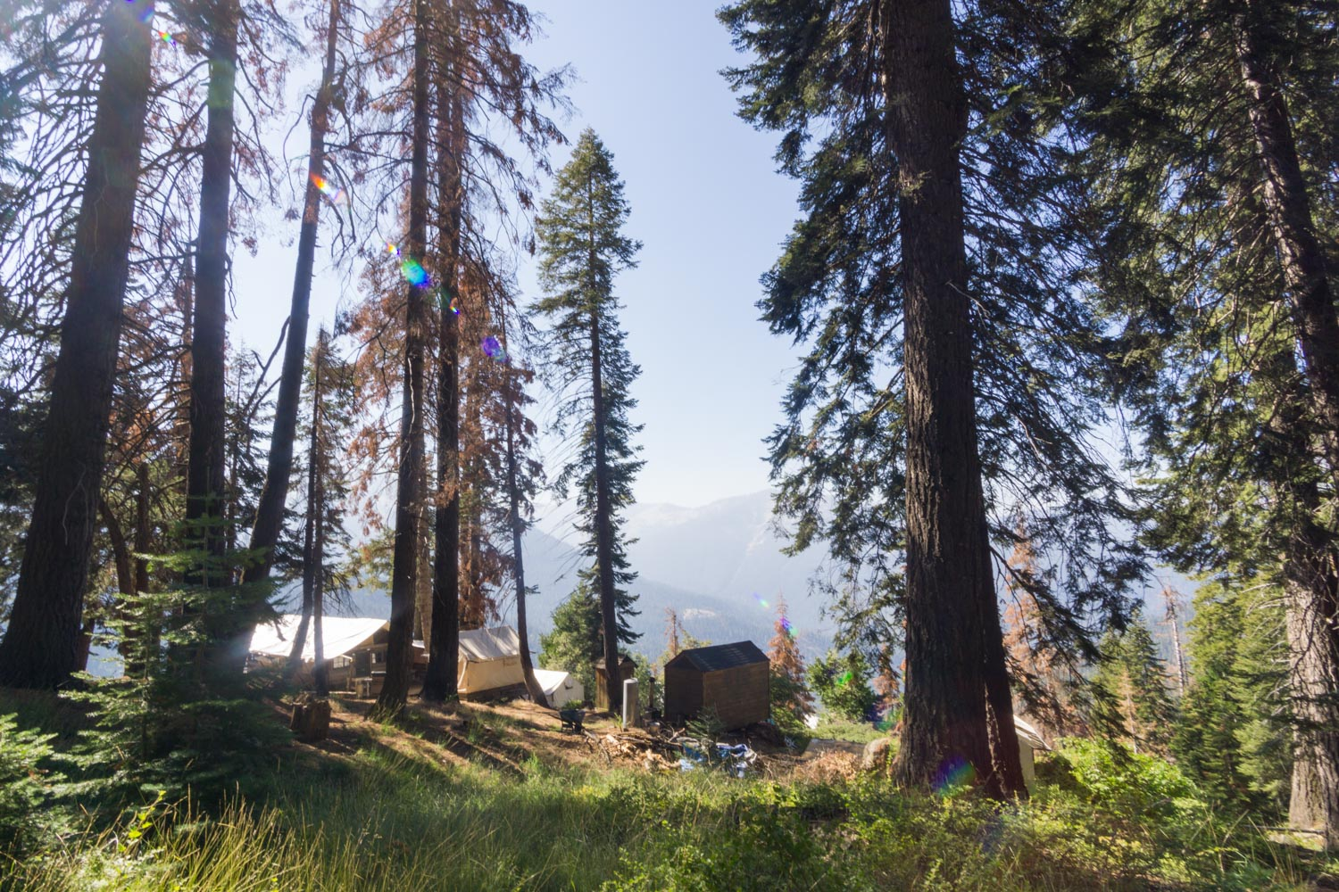 Bearpaw high sierra camp from crescent meadow