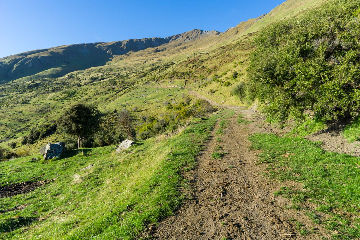 Following the dirt path