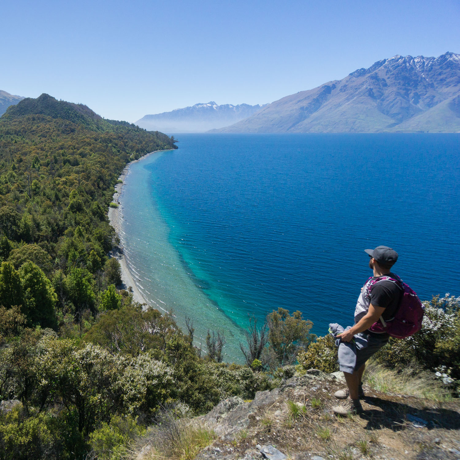 bobs cove track is the perfect stop during a new zealand roadtrip