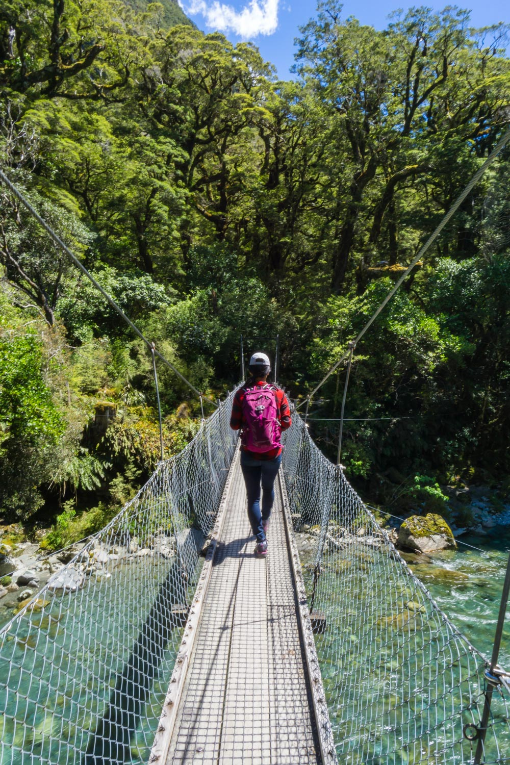 Love all the swinging bridges in New Zealand