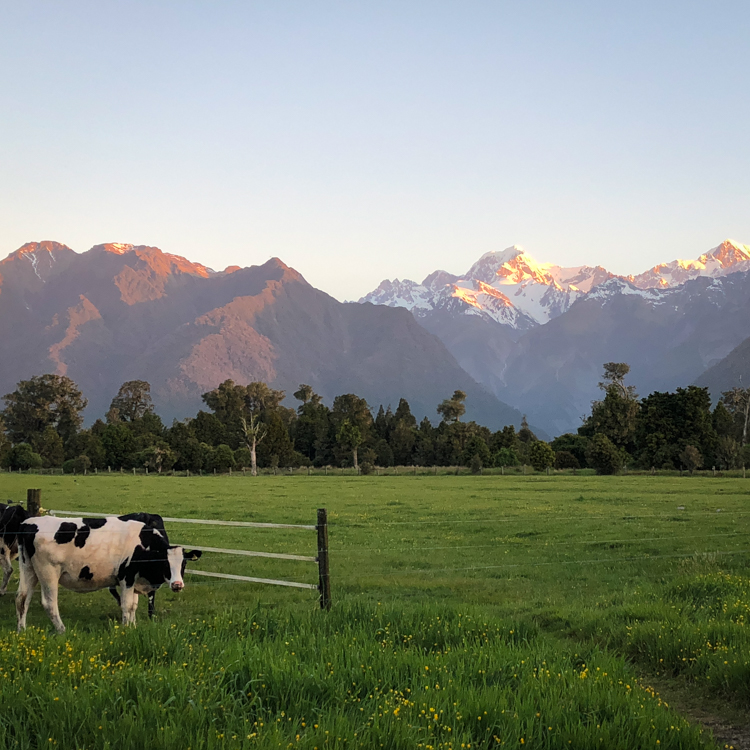 Views of Arokai/Mt. Cook from the other side