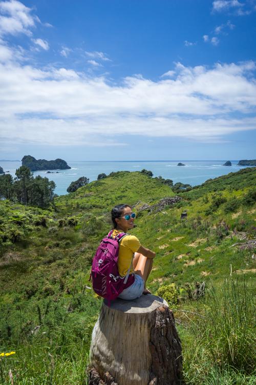 Photographing the coromandel peninsula coast