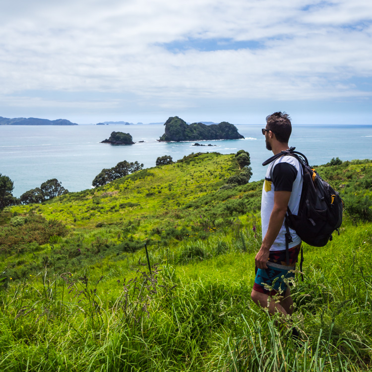 coromandel coast favorite things to do in new zealand