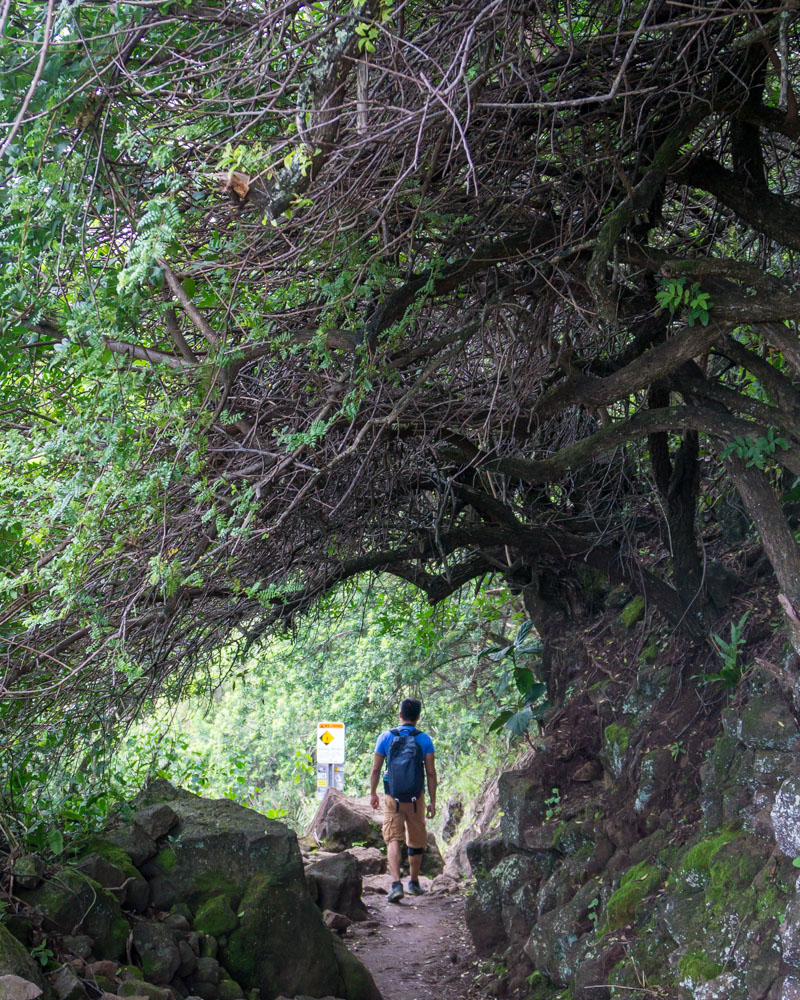 Short dayhikes on the Big Island