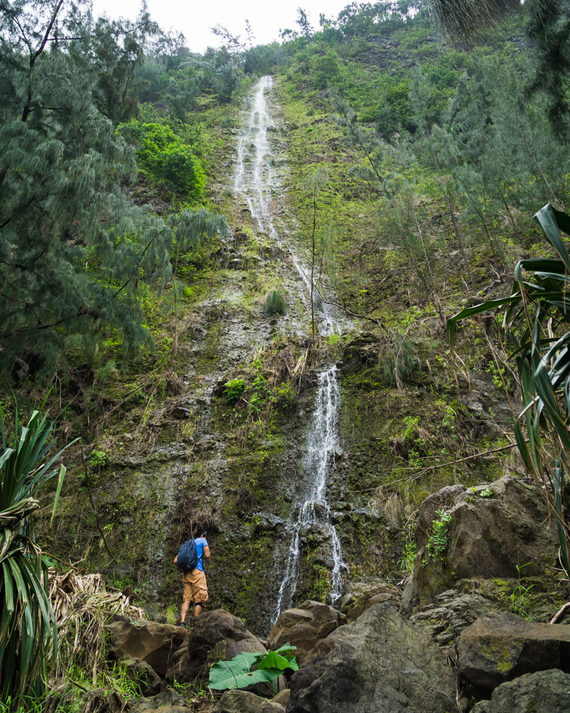 A hidden waterfall in a ravine