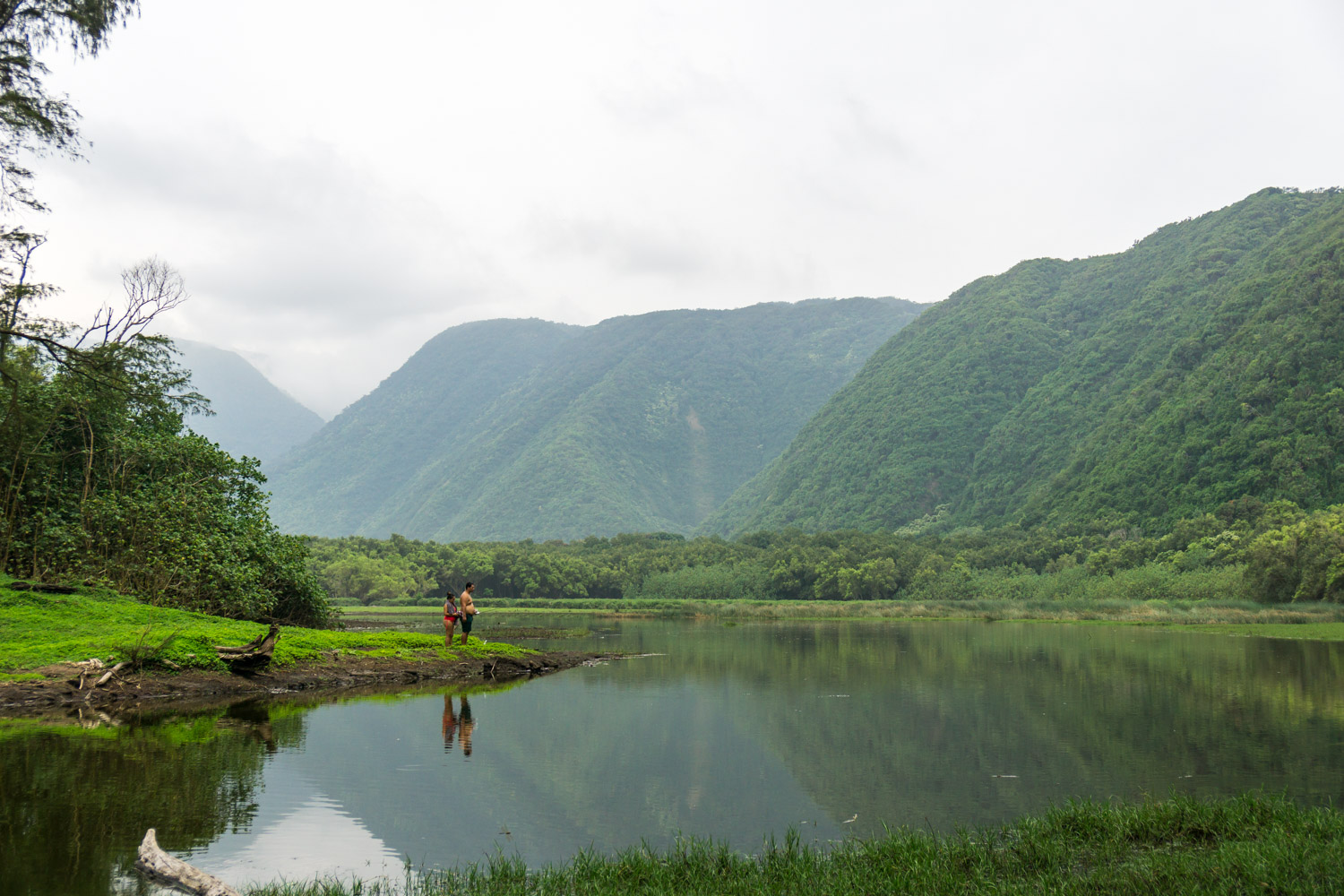 The beautiful lush valleyscape of Pololu