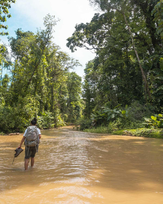 river crossing in corcovado jungle