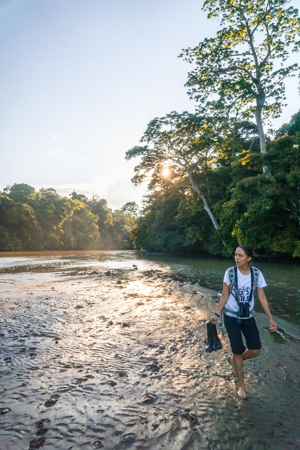 guided hikes in corcovado in costa rica
