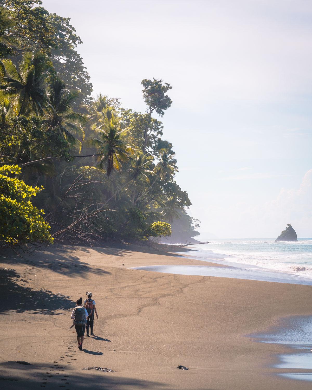hiking from la sirena corcovado jungle