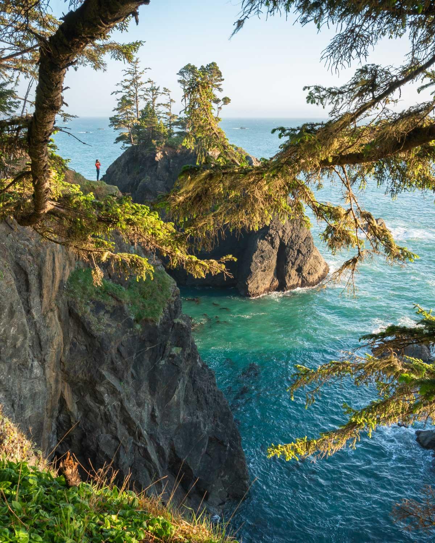 best-trails-natural-bridges-samuel-boardman.jpg