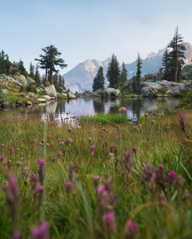 weekend backpacking trips in northern california