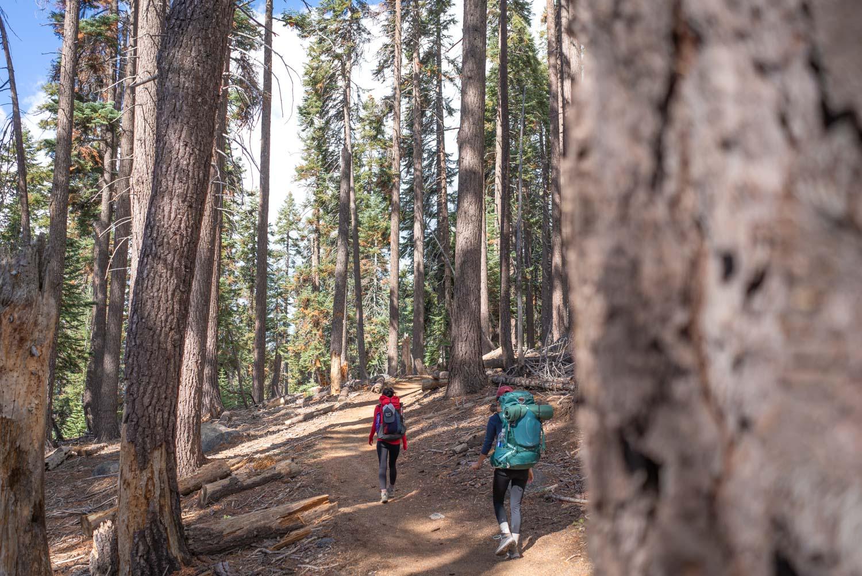 backpacking-pear-lake-sequoia-kings-canyon.jpg