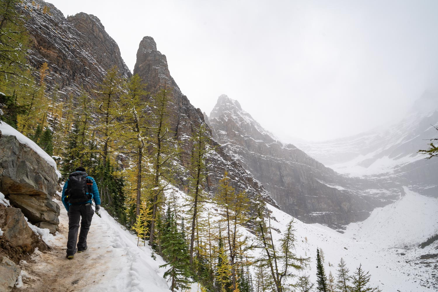 Hiking to Big Beehive from Lake Agnes