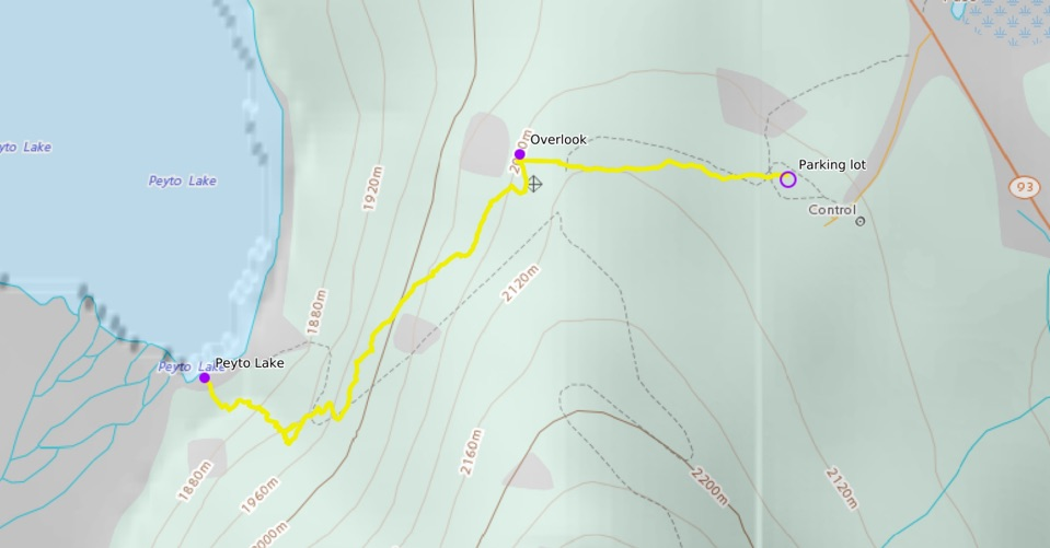 peyto-lake-hike-map.jpg
