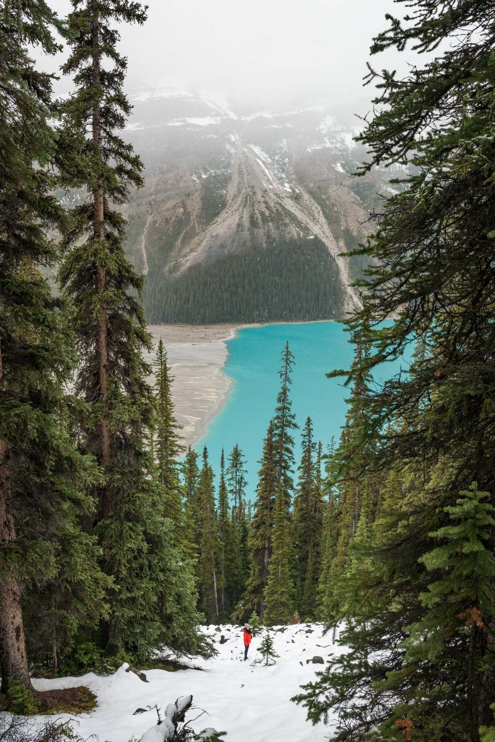 short day hikes in banff national park