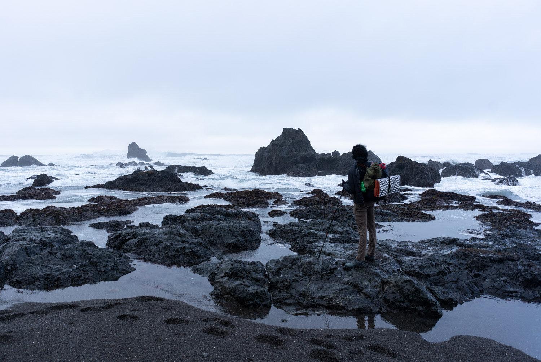 Lost Coast tidepools