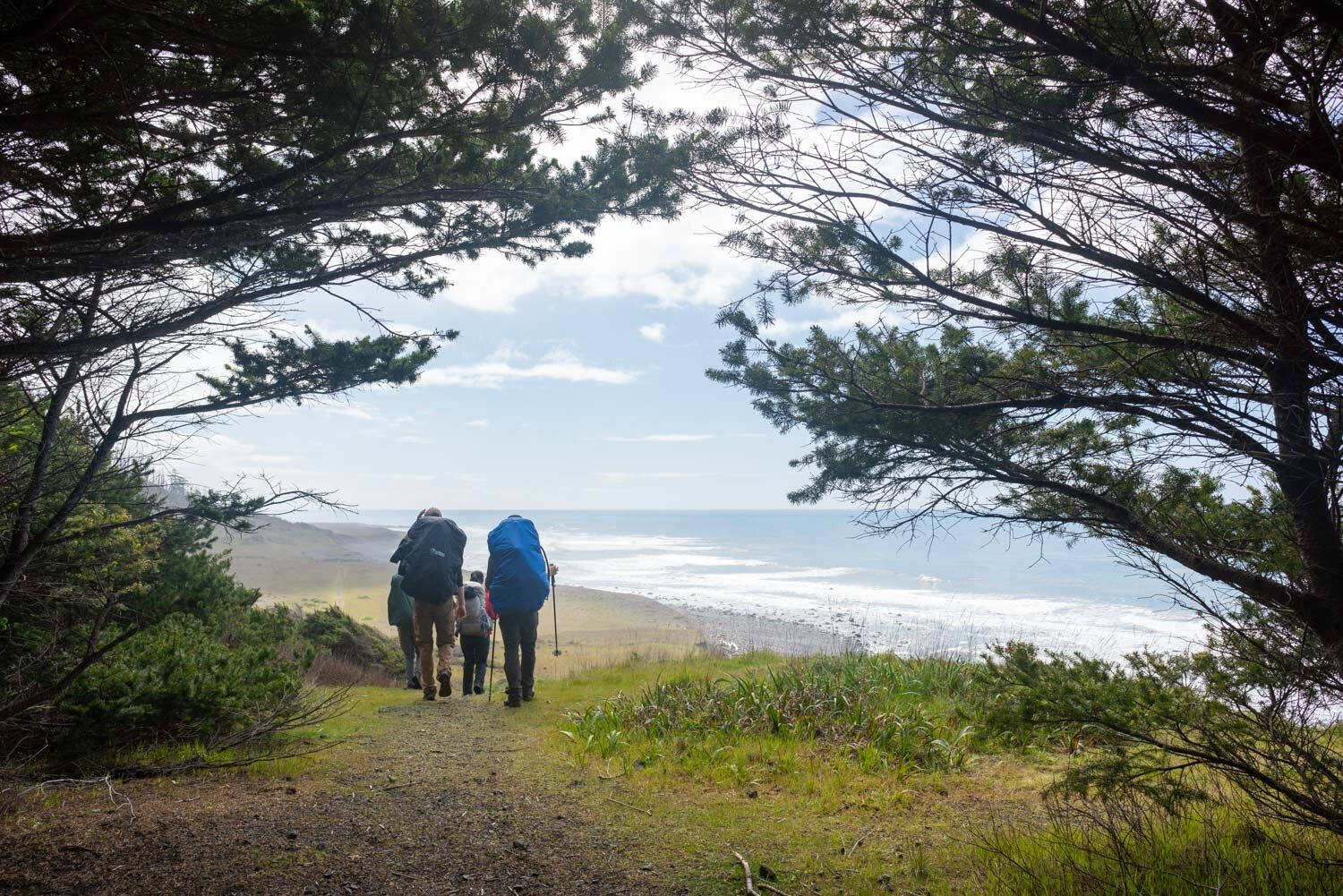 Hiking views on the Lost Coast in the King Range