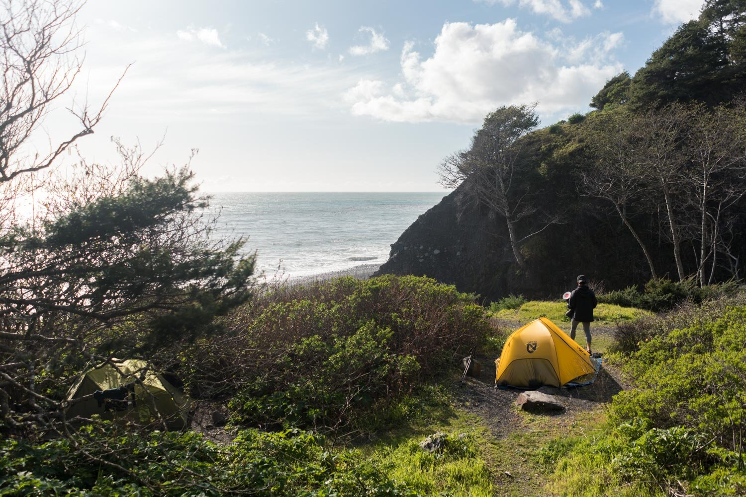 Lost Coast backpacking camp site at Buck Creek