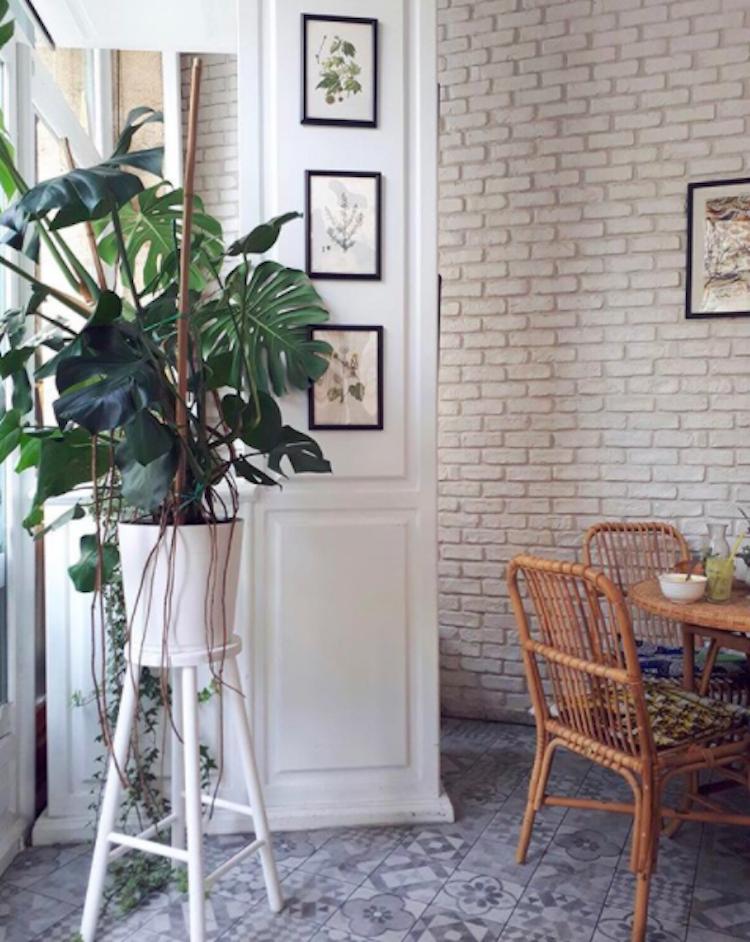 Kitchen Garden via  @pops_legras
