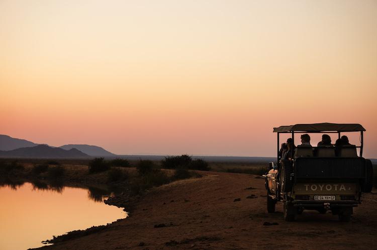 Madikwe South Africa Safari