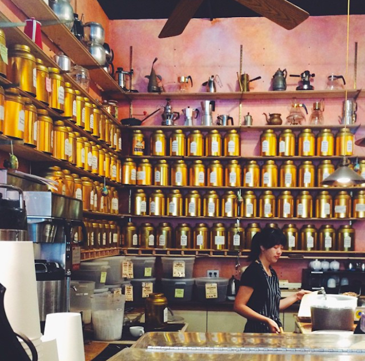 Coffee Conservatory. Photo via  Erin Spens