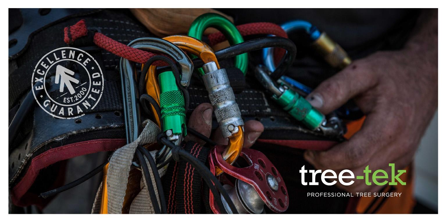 LMPP Tree Tek.png
