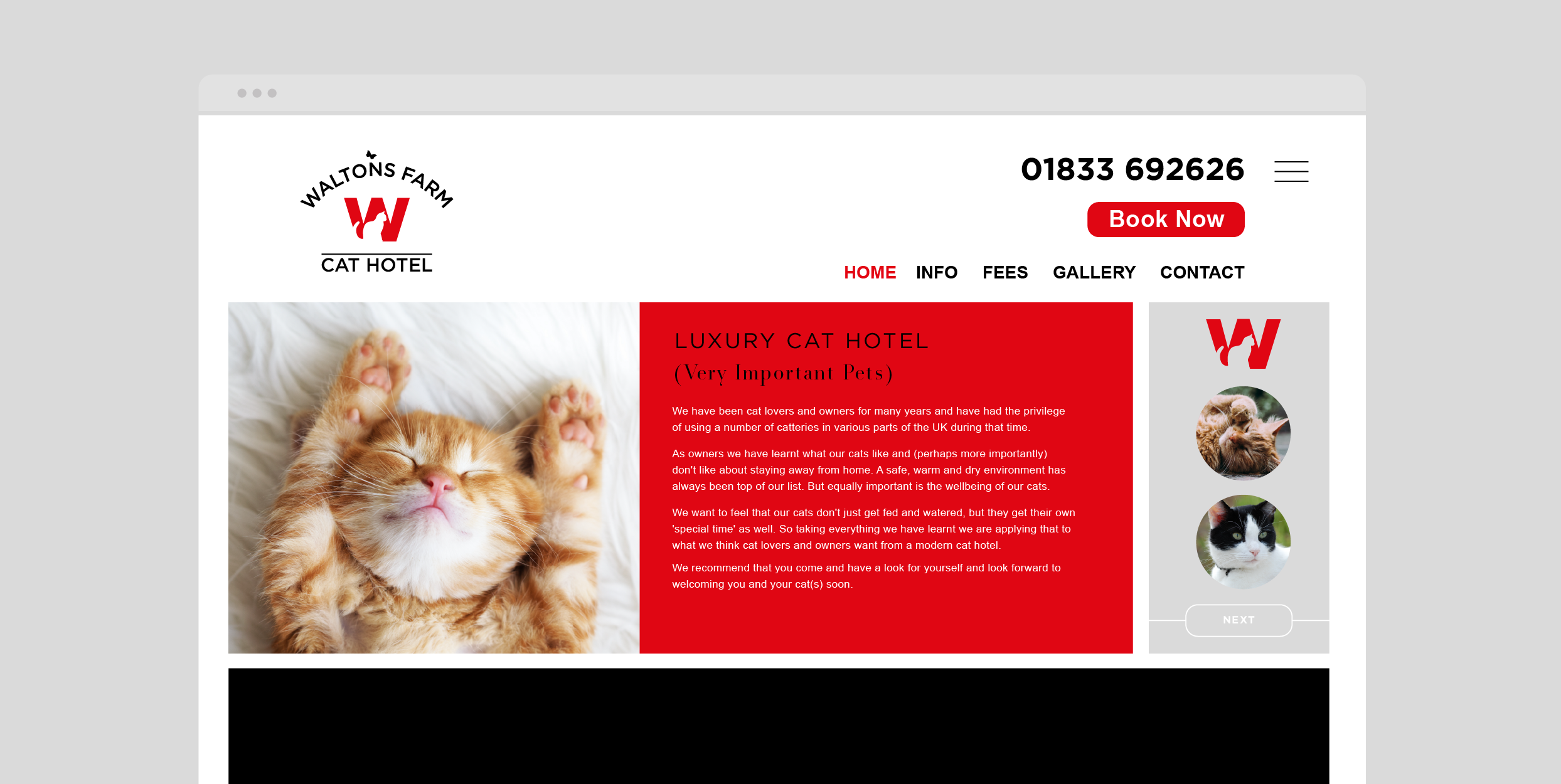 Cat Hotel - Website.png