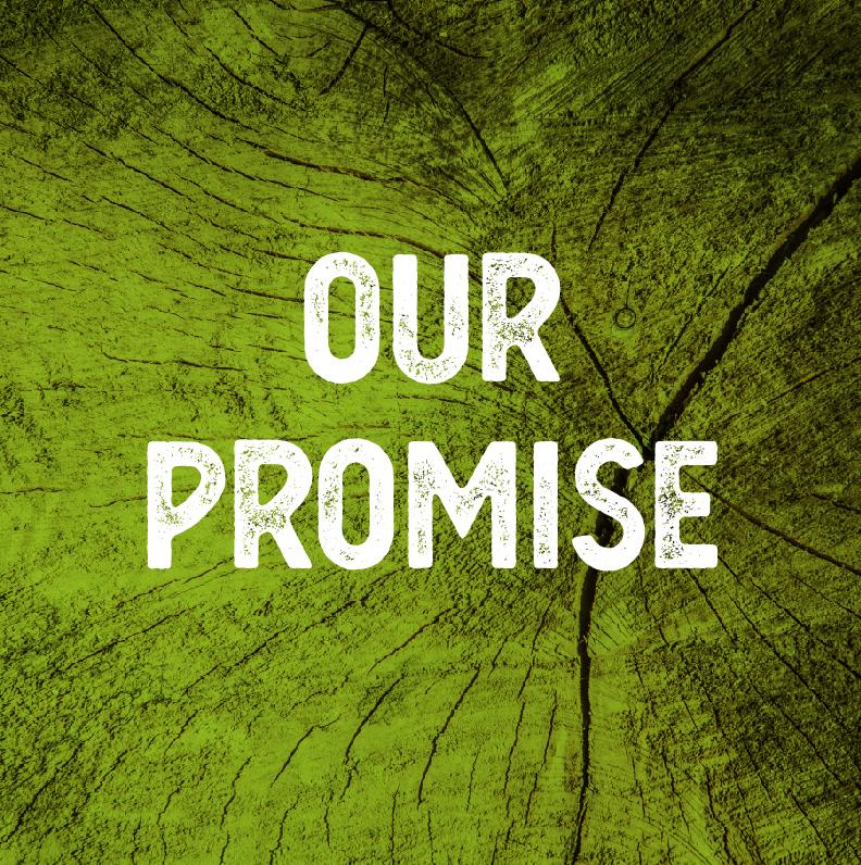 Tree Tek promise-100.jpg