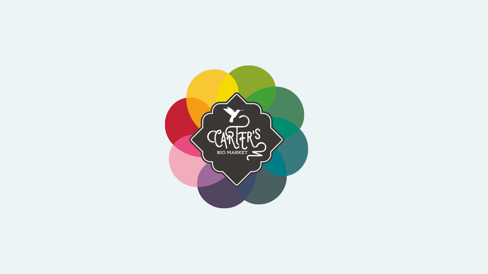 Carter's Bio 2.jpg