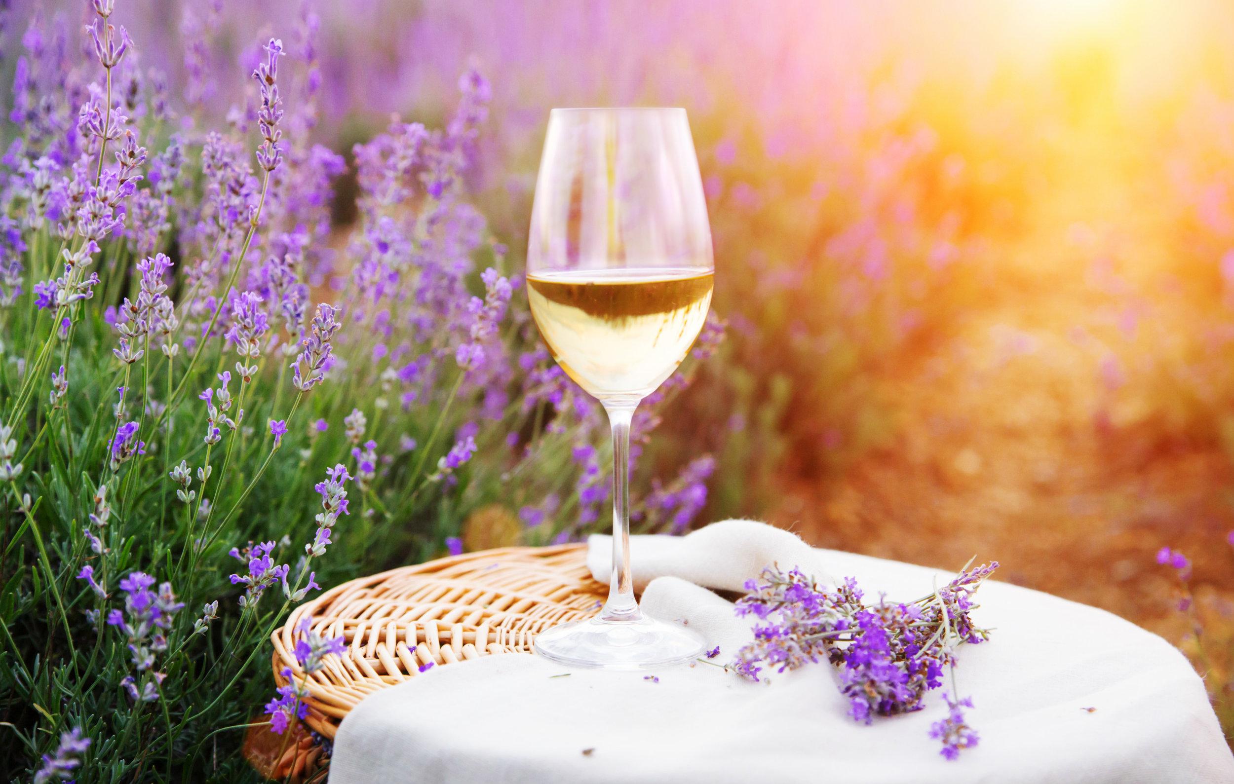 rose wine blig.jpg
