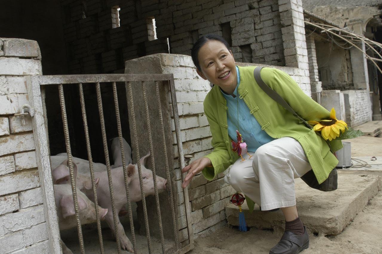 Mei Ng, rådgivare åt stadsledningen i Hong Kong och aktiv i kinesiska Jordens vänner