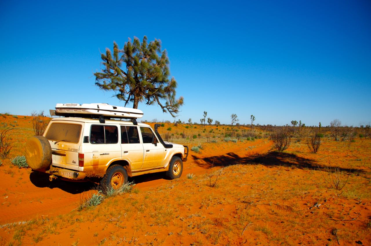 WESTERN DESERT - Ancient landscapes and the palpable history of Indigenous culture, a breathtaking 7-Day-Tour into the real heart of outback Australia.4,490.00 per person
