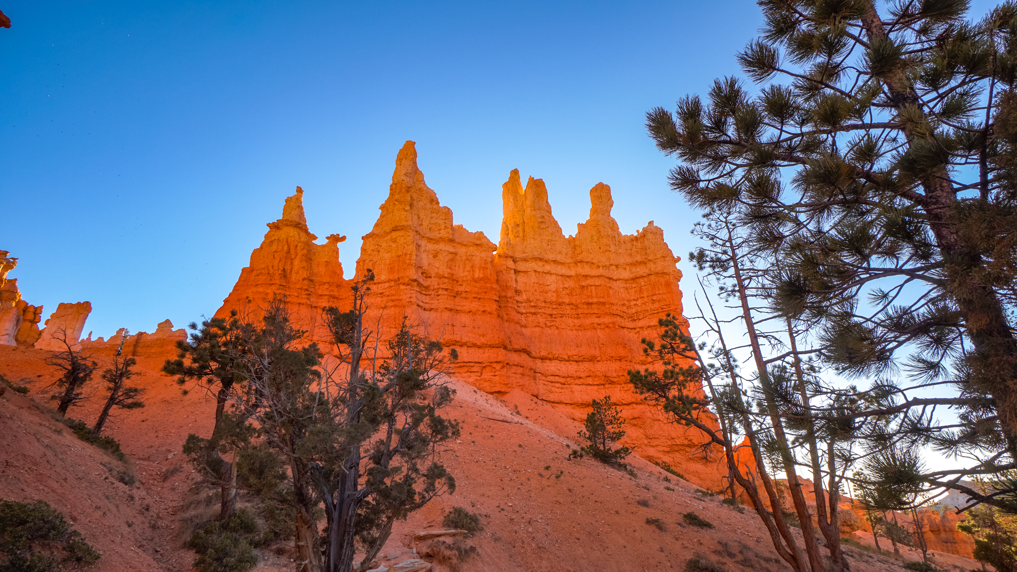 Hike with us along the largest collection of hoodoos in the World - a place to reflect
