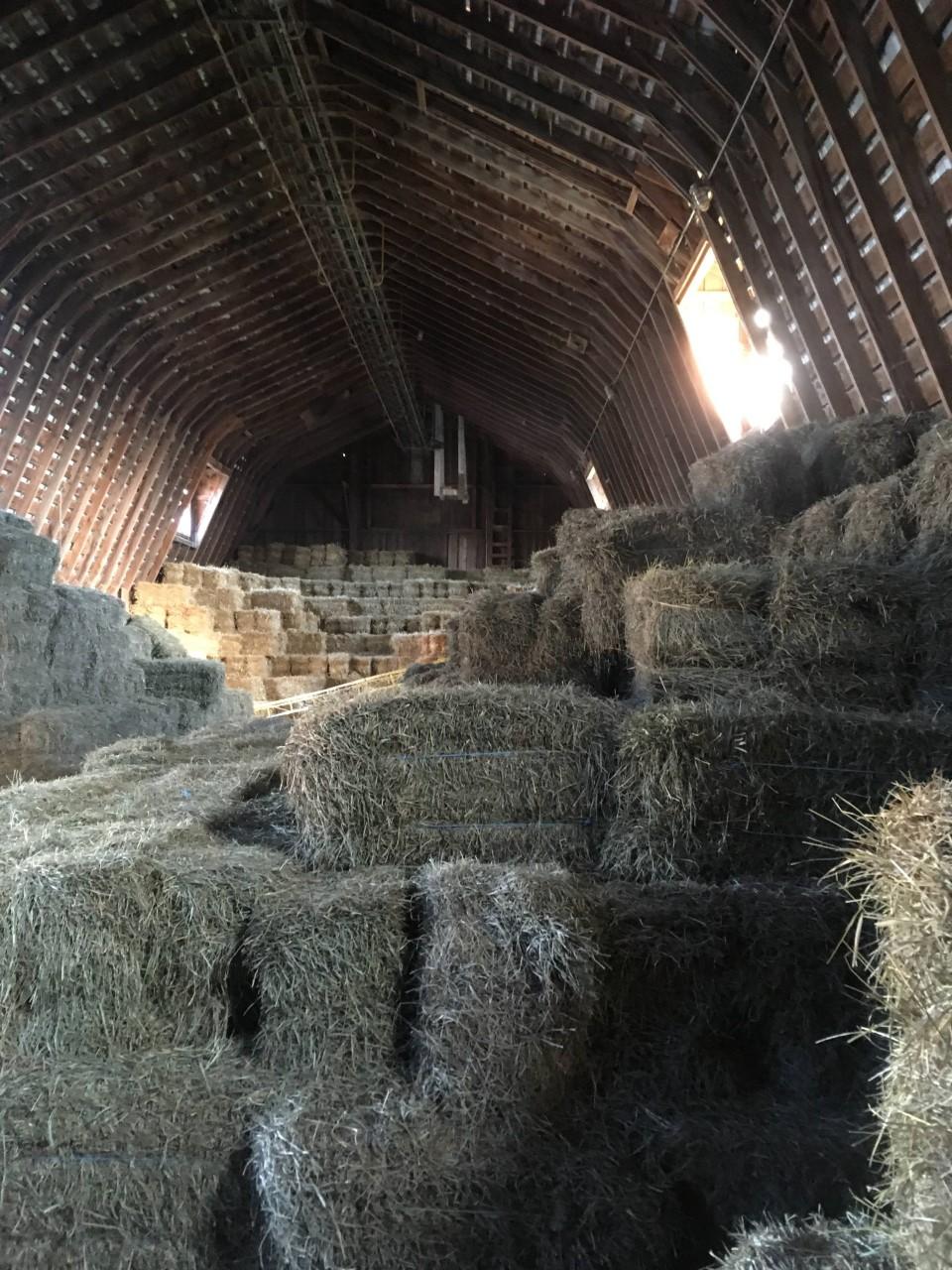 hay mow.jpg