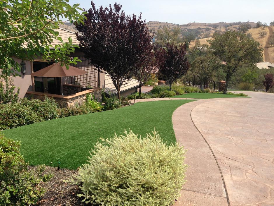 Artificial_Grass_Sherman_Oaks.jpg
