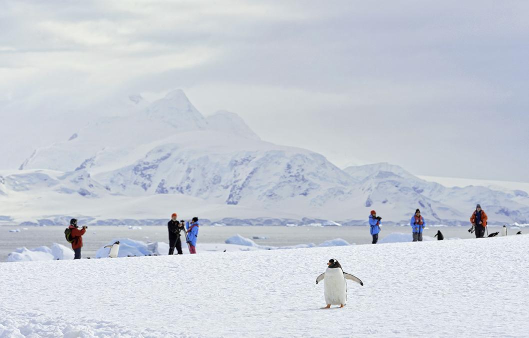 Antarctica_27112013_155_Topaz (1).jpg
