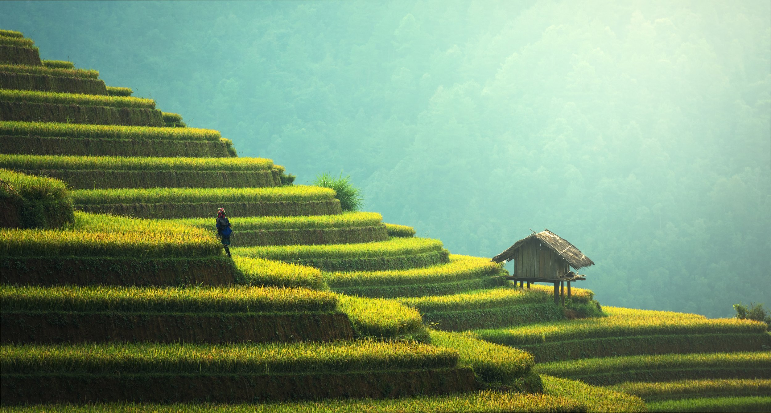Guilin_agriculture.jpg